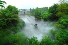 Ebisto: Κινέζοι μετέφεραν ολόκληρο αρχαίο δάσος για να το ...