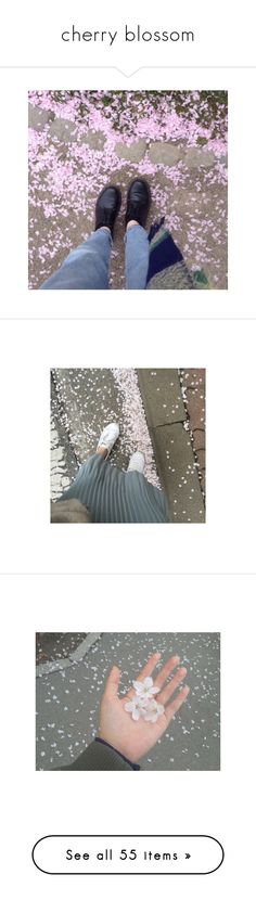 """""""cherry blossom"""" by bloomly-bee on Polyvore featuring pictures, aesthetic, magazine, photos, pictures - grey, backgrounds, filler, image, pics e pictures - white"""
