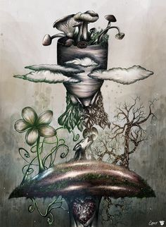 My favorite mushroom - Matteo Della Chiesa. https://www.behance.net/matteodellachiesa