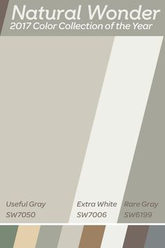 Natural Wonder, our 2017 Color Collection of the Year, makes coordinating the colors in your home a walk in the park! Combine lighter tones, like Useful Gray (SW7050) and Extra White (SW7006) with a deeper color like Rare Gray (SW6199) to create perfect, subtle balance.