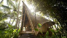 Construções em bambu numa espetacular vila sustentável, a Green Village