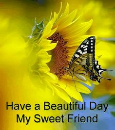 Have a beautiful day my sweet friend