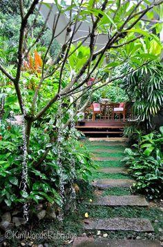 Tabu: Tropical Paradise in Cairns, Queensland, gazebo ideas Tabu: Tropical Paradise in Cairns, Queensland, Tropical Garden Design, Tropical Backyard, Tropical Landscaping, Modern Backyard, Tropical Plants, Tropical Gardens, Florida Landscaping, Exotic Plants, Backyard Garden Landscape