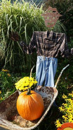 Scarecrow display