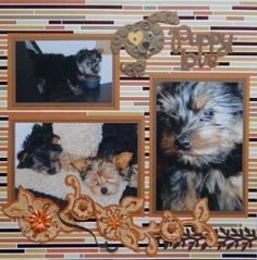 Pet Dog scrapbook page with a Dog & Puppy Love title from Cricut's Sweethearts