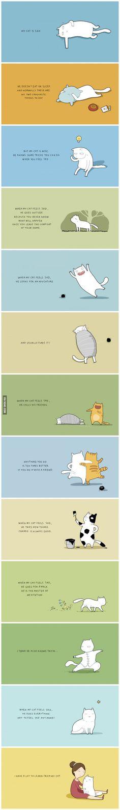 When my cat feels sad (by Lingvistov)