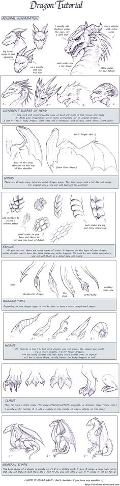 Dragon tutorial by *Evolvana on deviantART