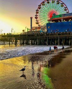 Santa Monica Pier, Los Angeles is something I want to visit for a long time. The beach and the pier together are just beautiful Road Trip Usa, West Coast Road Trip, Los Angeles Trip, Los Angeles Travel, California Vacation, California Dreamin', Wanderlust, Santa Monica Los Angeles, Places To Travel