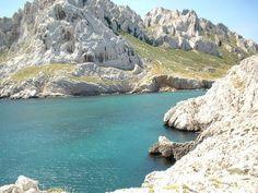 Baie des singes Marseille