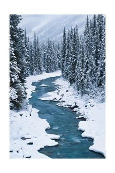 Great Photos of Best Places to Visit in Canada - World inside pictures Bend in the North Saskatchewan River: Banff National Park, Alberta Canada Winter, Winter Szenen, Alaska Winter, Canada Holiday, Winter Walk, Winter Magic, Winter Months, Winter Season, Beautiful World