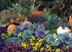 Fall Planting l Unique by Design