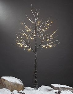 Lightshare 5 Feet Snow Dusted Tree 72 LED Lights Warm White For Christmas Tree and Christmas Village Decoration Decoration Idea for Home Festival and Party Indoor and Outdoor Use * Read more at the image link. (This is an affiliate link)