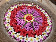 New Wedding Centerpieces Flowers In Water Floral Arrangements 23 Ideas Rangoli Designs Flower, Flower Rangoli, Beautiful Rangoli Designs, Easy Rangoli, Flower Designs, Flower Bowl, Flower Girl Basket, Flower Art, Indoor Flowers