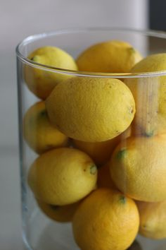 Winter arrangements: when life hands you lemons...