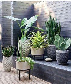 Si tienes una terraza enorme o un balcón francés, puedes encontrar aquí algunas ideas para agregarle plantas y crear un espacio natural en el que puedas pasar tus tardes o mirar desde tu sofá con alegría.