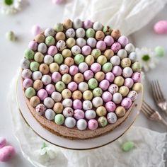 Täyteläinen Mignon-juustokakku (Ve) Margarita, Nutella, Cereal, Mango, Birthday Cake, Vegetables, Breakfast, Desserts, Food