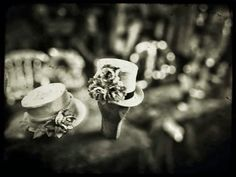 Savelga Photography