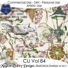 Brush Set And Overlays - CU Vol 84 by MagicalReality Designs #CUdigitals cudigitals.com cu commercial digital scrap #digiscrap scrapbook graphics