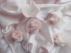 grafika rose, pink, and aesthetic Aesthetic Themes, Pink Aesthetic, Angel Aesthetic, Princess Aesthetic, Witch Aesthetic, Flower Aesthetic, Aphrodite, Alluka Zoldyck, Goddess Of Love