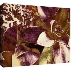 Dean Uhlinger Succulent Study Gallery-Wrapped Canvas, Size: 18 x 24, Purple