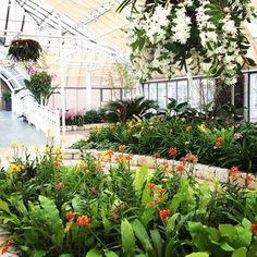 Franklin Park Conservatory And Botanical Gardens 2