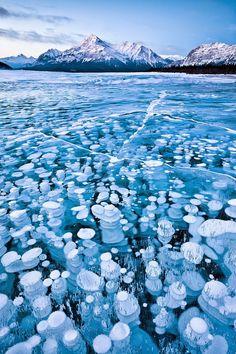 30 raros e deslumbrantes fenômenos naturais - Bolhas de gelo inflamáveis: bolhas congeladas de metano, presas debaixo do Lago Abraão, no Canadá.