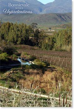 Win a weekend for 2 in Bonnievale 2 In, Wines, South Africa, Vineyard, To Go, Mountains, Travel, Outdoor, Outdoors
