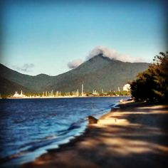 Cairns in Queensland Australia Cairns Queensland, Queensland Australia, Business Travel, Solo Travel, Family Travel, Places To See, Stuff To Do, Relationships, Destinations