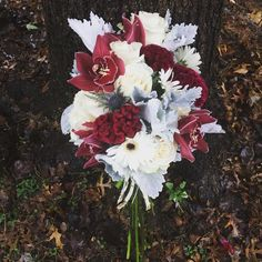 Cool fall bouquet with blue thistle, burgundy coxcomb, white roses Daisy Bouquet Wedding, Burgundy Wedding Flowers, Fall Wedding Bridesmaids, Burgundy Bouquet, Bridal Bouquet Fall, Fall Bouquets, Blue Bouquet, Fall Wedding Bouquets, Fall Wedding Decorations