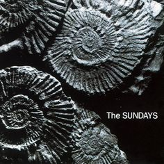 Reading, writing and arithmetic {1990} The Sundays