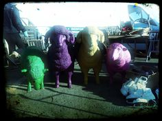 Neon sheep recently spotted at Newark antiques fair!