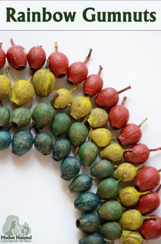 Rainbow gumnut craft for fine motor fun - Mother Natured Play Based Learning, Kids Learning, Art For Kids, Crafts For Kids, Christmas In Australia, Nature Table, Outdoor Learning, Creative Play, Nature Crafts