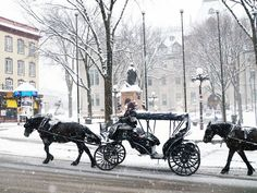 Photographic evidence as to why one must witness Quebec City in winter at least once in one's lifetime + helpful tips for planning a memorable trip. Quebec Winter, Canada Christmas, Canadian Travel, Snow Scenes, Quebec City, Winter Snow, Winter Wonderland, Skiing, Nature Photography
