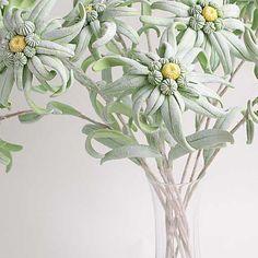 Эдельвейсы #ручнаяработа #лепка #лепкацветов #цветы #флористика #эдельвейс #букет #handmade #vkpost #polymerclay #clayflowers #bouquet