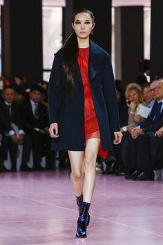 06e5098b388 Dior Ready To Wear Fall Winter 2015 Paris