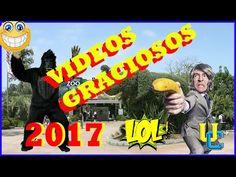 videos graciosos 2017