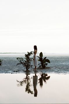 Overgrowth by Parker Fitzgerald & Riley Messina of Erba Floral Studio Overgrowth Parker Fitzgerald, Art Photography, Fashion Photography, Foto Art, Waves, Scene, Photoshoot, In This Moment, Landscape