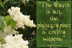 """:) """"The Earth is art, the photographer is only a witness."""" - Yann Arthus-Bertrand"""