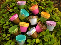 Wedding Shower Favors - Hand Painted Flower Pots, with some airplane plants planted in them?
