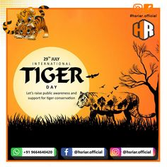 International Tiger Day...!!!  Save Tiger, Save Wild life...  Follow us @hsriar.official  Contact Us Email: hsriar.work@gmail.com Whatsapp: +91 9664640420  #tigerday #internationaltigerday #savetiger #tiger #hsriar #saveanimals #savetigersavewild #tidayday2020 #hsriarofficial #marketing #socialposts #startup #vadodara #sundarvan #animals #tigerlife #socialmediamarketing #supporttiger Tiger Conservation, Wild Life, Social Media Marketing, Day, Animals, Animales, Animaux, Wildlife Nature, Animal