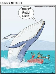 Beware of whales doing trust falls…