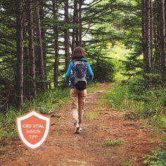 Unsere Lungen sind das wichtigstes Atmungsorgan und arbeiten rund um die Uhr. Daher ist es besonders wichtig, vor allem in Zeiten wie diesen, sie zu stärken. Golf Bags, Backpacks, Sports, Immune System, Round Round, Tips, Hs Sports, Backpack, Sport