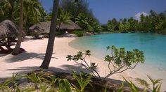 Bora Bora, Society Islands, Vacation Resorts, Destin Beach, Hotel Reviews, Four Seasons, Trip Advisor, River, Places