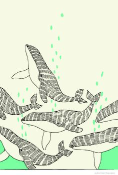 whales (graphics)