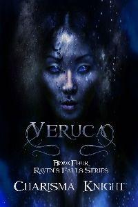 Book 4 Raven's Falls Series
