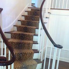 Antelope | stark carpet stair runner