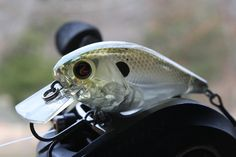 River2Sea Ish Monroe Biggie Poppa photo by Brad Wiegmann Outdoors http://www.bradwiegmann.com/lures/hot-lures/974-ish-monroes-biggie-by-river2sea-lures.html