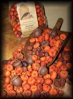 Primitve Scented Harvest Putka Pods Acorns by harvestmoonprims, $5.00