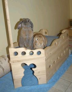 Ahoy! Custom-made, 2-level bunny boat. From Lou Kaninchen on FB. For the bunny room.