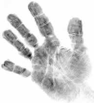 Lesson 2 - Fingerprints - Magic of Forensic Science